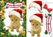 cute kitten in santa hat with robin A5