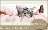 Sleeping Cat Facebook Timeline Cover