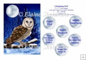 Christmas Barn Owl - 5 x 7 Card Topper With Assorted Greetings