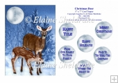 Christmas Deer - 5 x 7 Card Topper & Assorted Greetings - PU 300