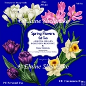 Spring Flowers Set Two- CU Designer Resource For Commercial Use