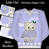 Little Owl - Christmas Jumper Card