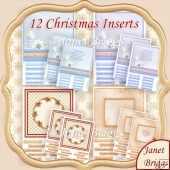 HOLLY RIBBON & FROSTED FLORALS Christmas Inserts Bumper Kit