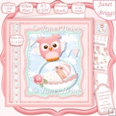 WHOO HOO IT'S A GIRL New Baby 7.5 Decoupage & Insert Kit