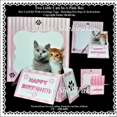 Two Little Kittens In A Pink Box - Box Card Kit With Greetings T