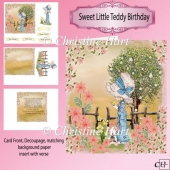 Sweet Little Teddy Birthday Mini Kit
