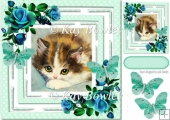 pretty kitten in polkadot frame with turq roses 8x8