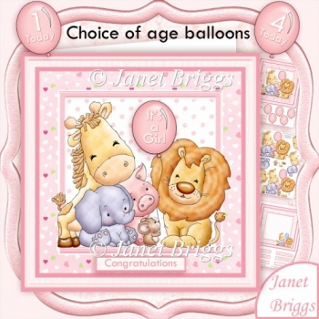 Animal Crew Baby Girl or Birthday Girl Kit with Ages