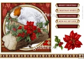 Christmas Robin 7x7 Red With Matching Insert