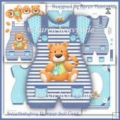 Sweetbabyboy 2 Romper Suit Card