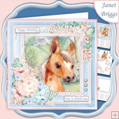 pony foal 7.5 Decoupage & Insert Kit