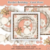 Purrfect Birthday Card Front & Decoupage