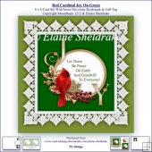 Cardinal Joy With Lace & Berries On Green 6 x 6 Card Kit