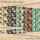 10 Beautiful Vintage Feathers 8 x 8 Papers