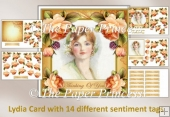 Lydia Card with 14 different sentiment tags