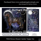 Wild Horses Dream Catcher Quick Topper Set