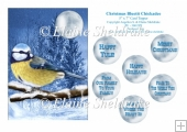 Christmas Bluetit Chickadee - 5 x 7 Card Topper & Ass. Greetings