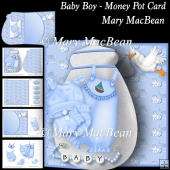 Baby Boy - Money Pot Card