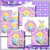 Bunny Chick (2 cards in one kit)
