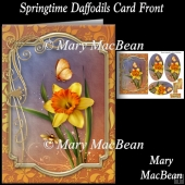 Springtime Daffodils Card Front