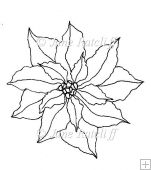 A Floret of Poinsettia Digital Stamp
