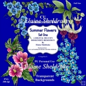 Summer Flowers Set One - CU Designer Resource For CU/PU