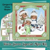 You're Snow Special Mini Kit