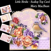 Little Birdie - Scallop Top Card