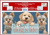 It's A Dog's Life -DL Card Kit With Decoupage, Insert & Envelope