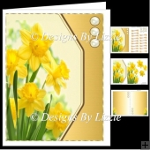 Spring Flowers Daffodils Mini Kit