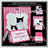 Black & White Cats In A Pink Box - Box Card Kit With Greetings