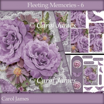 Fleeting Memories - 6