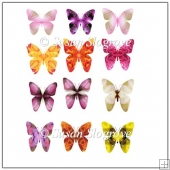 Butterfly Embelishments