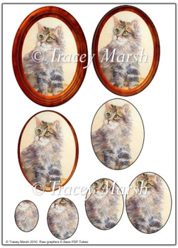 Tabby Cat in Oval Frame Cameo Pyramage Sheet