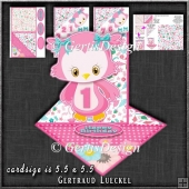 Cute Fancy Easel Pink Owl Birthday 1-9 1260