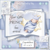 Little Prince Arrival