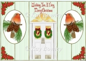 Lovely christmas robins with front door pop out