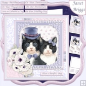 CAT LOVERS 7.5 Decoupage & Insert Card Kit