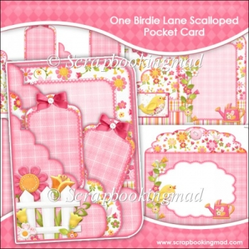 One Birdie Lane Scalloped Pocket Card & Envelope Set