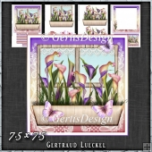Flower Window Spring Callas Card Kit 1421