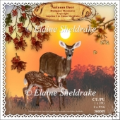 Autumn Deer - Designer Resource Kit