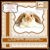 "Lop Eared Bunny Rabbit 7"" x 7"" Card Topper With 5 Greetings"