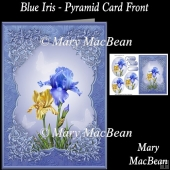 Blue Iris - Pyramid Card Front
