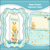 Bees Knees Spinner Card & Envelope