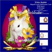 White Rabbit Easter Egg Shaped Cut & Fold Card Kit