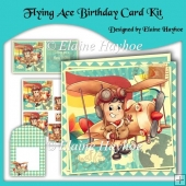 Flying Ace Birthday Card Kit