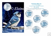 Christmas Blue Jay - 5 x 7 Card Topper With Assorted Greetings