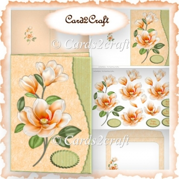 Peach Magnolia wavy edge card set