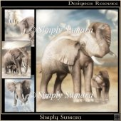 Designer Resource 5 Elephant Papers