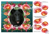 "Belgian Shepherd Dog & Roses - 8"" x 8"" Card Topper + Decoupage"